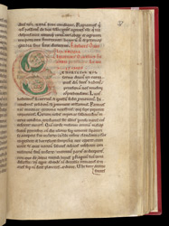 Decorated Initial, In A Collection Of Homilies By Caesarius of Arles, With Other Works f.37r